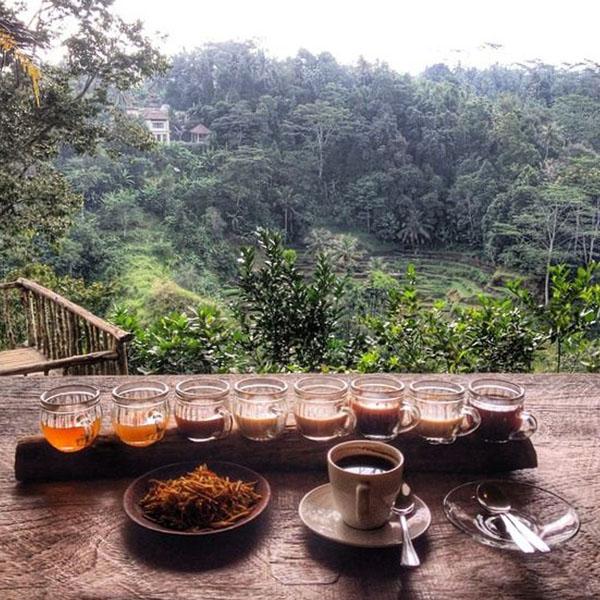 قهوه اندونزی
