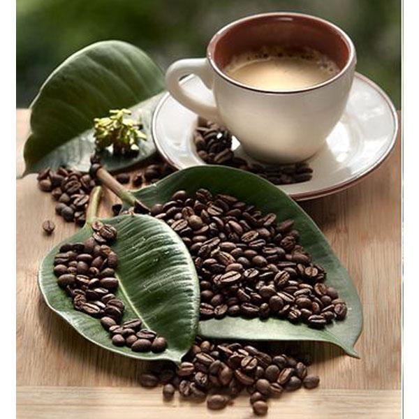 قهوه ویتنام مدیوم