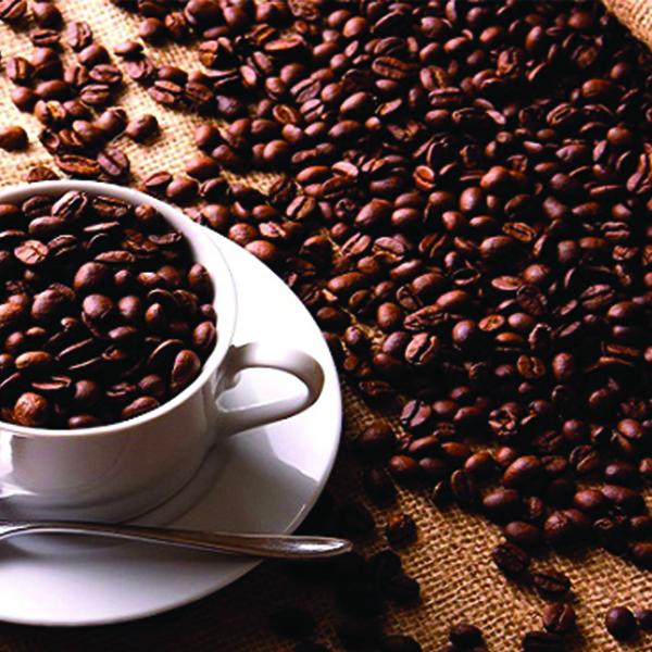 بهترین قهوه روبوستا